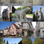 Dijon_composition