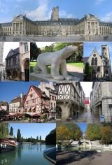Dijon_composition